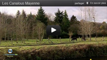 Video Mayenne